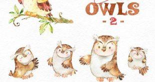 Cute Owls 2. Forest birds clip art, watercolor, wreath, florals, greeting, invite, babyshower, woodland, autumn, wild, kids, nice, planners