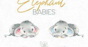 elefant. Babys. Aquarell kleine Tier Clipart, Afrika, Kind, blau, rosa, Hase, Blumen, Schlaf, Gruß, Kind, Baby-born, Babyshower
